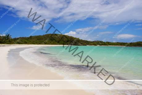 Puerto Rico Vieques Island Resorts