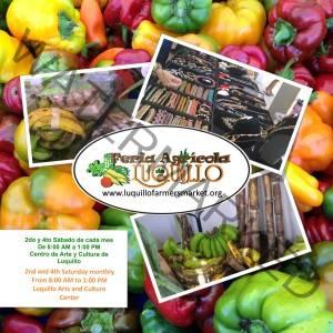 Luquillo Farmers Market