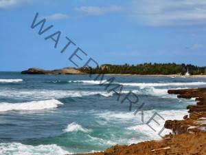 Arecibo Coast (3)