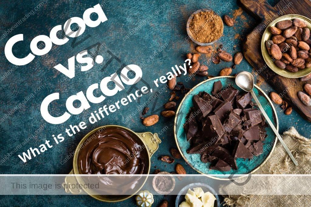 Cocoa vs. Cacao
