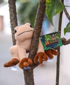 Plush Coqui With Suction Feet That Sings