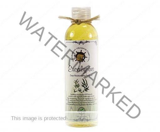 Eucalyptus Body Oil