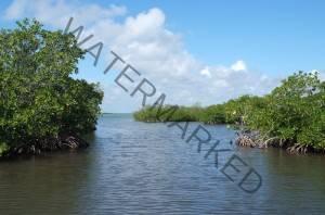 humacao reserve humacao puerto rico