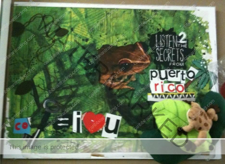 puerto rico school project