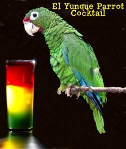 midori cocktail recipe