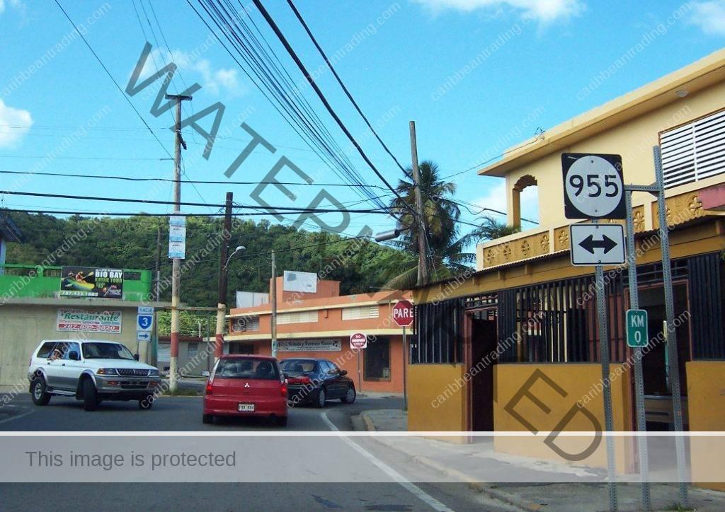 businesses in el yunque