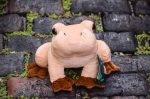 coqui frog stuffed animal