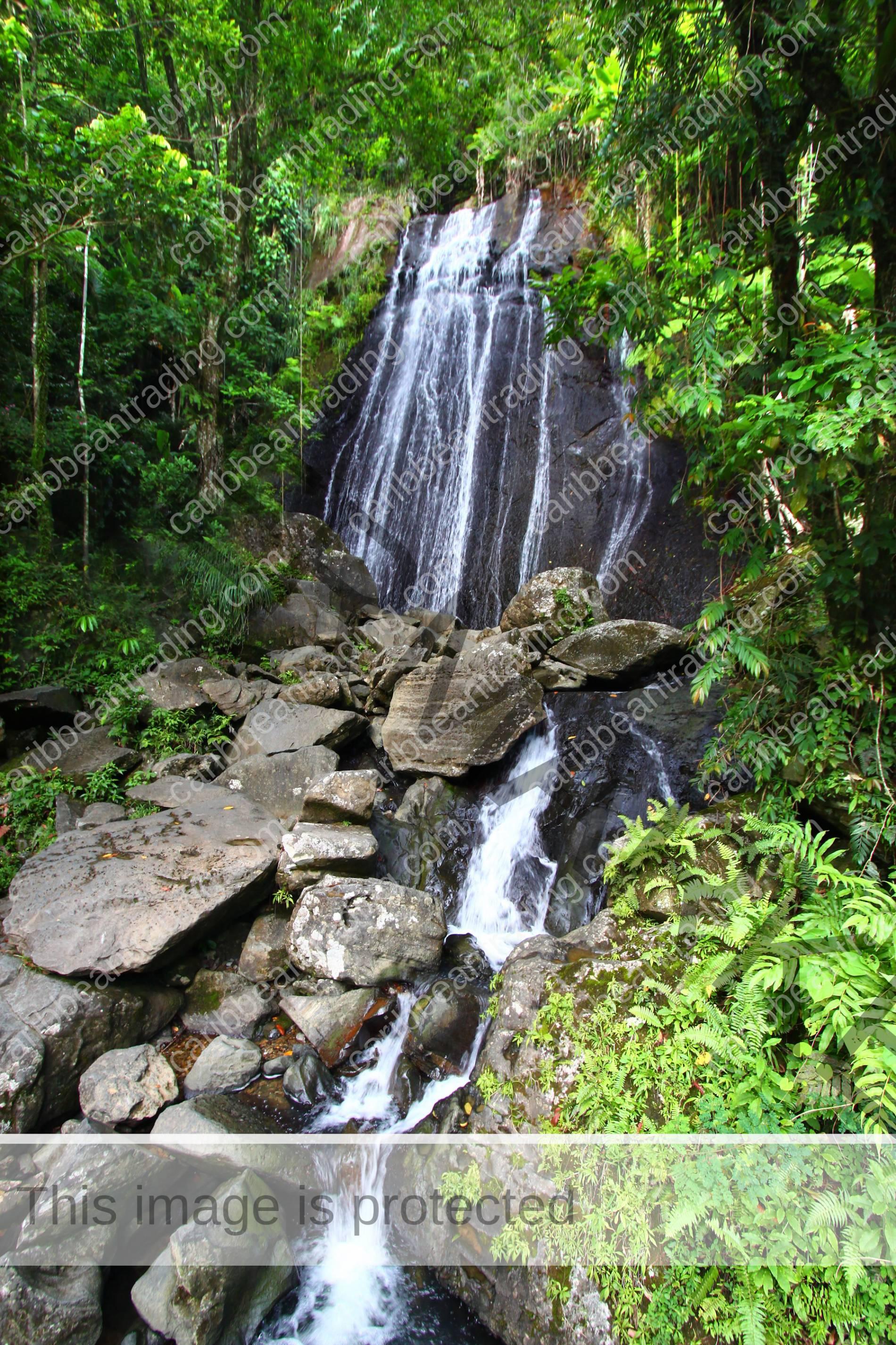 So Many Things To Do In Rio Grande Puerto Rico Puerto