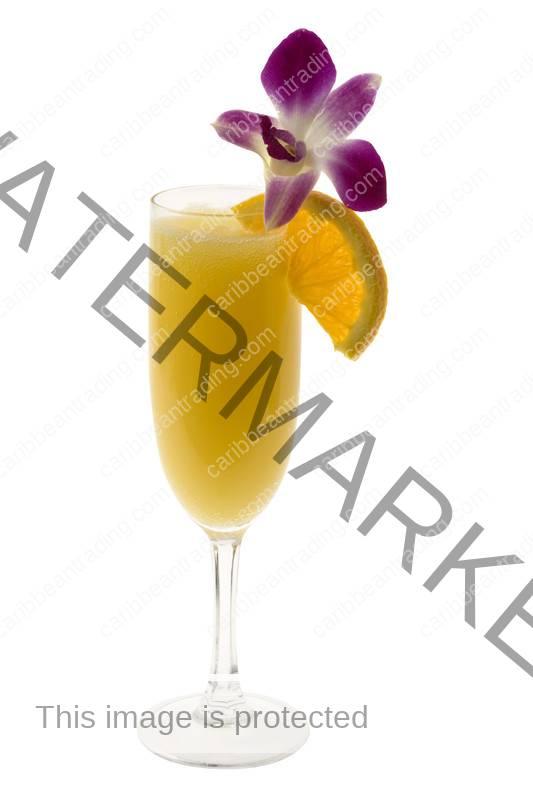 caribbean-trading-tropical-mimosas