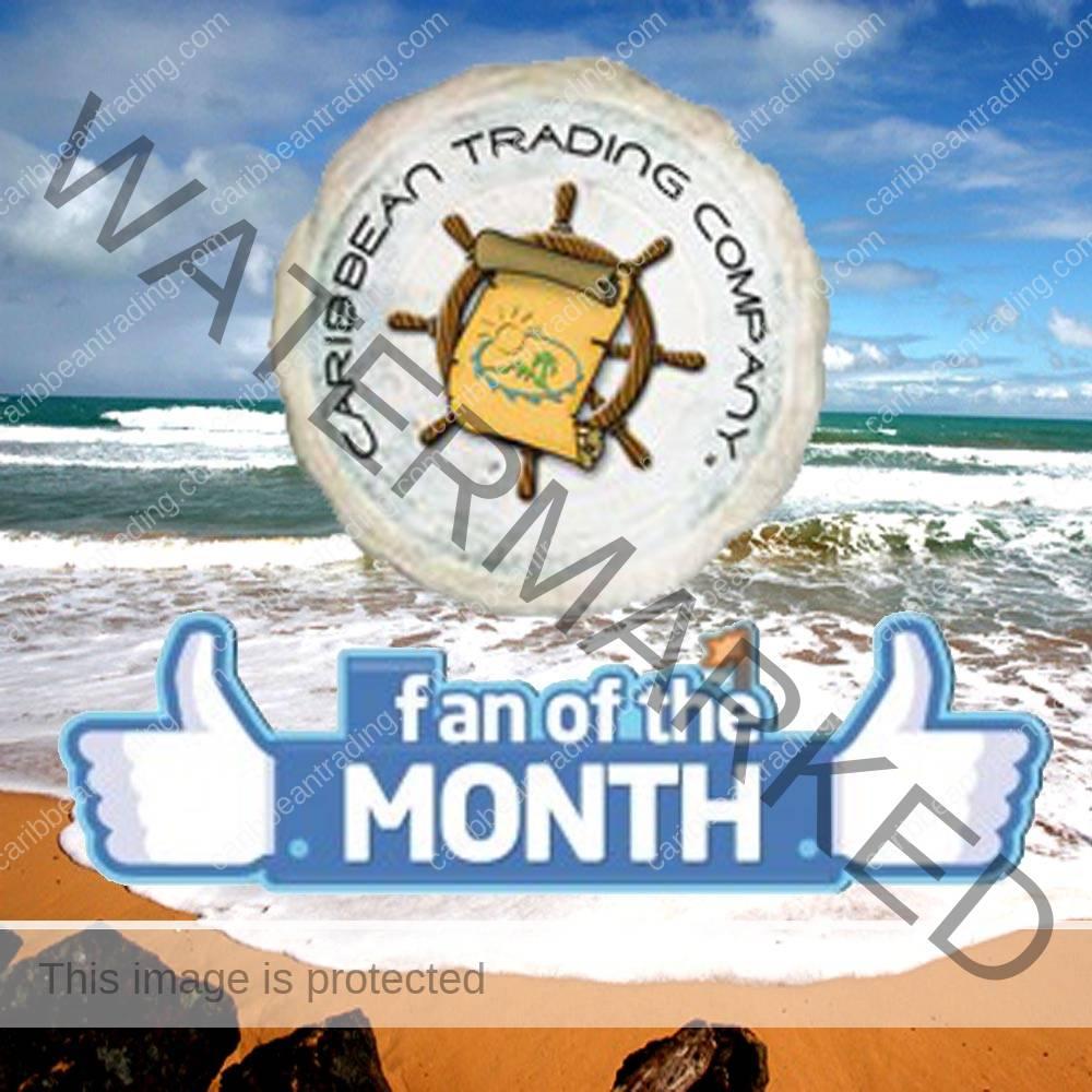 fan of the month