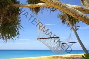 history of hammocks