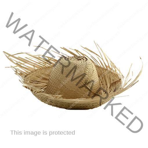 child pava hat 510