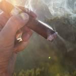 Premium Caribbean Cigars