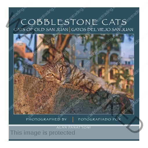 cobblestone 510