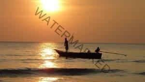 caribbean fishing