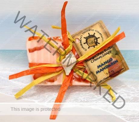 Mango Mandarin Body Soap
