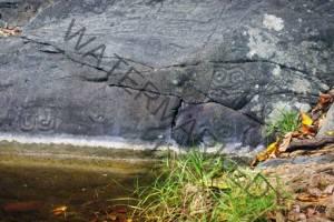 Taino Petroglyphs Puerto Rico