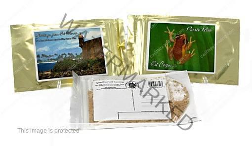 spice postcards 510